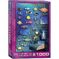 """Пазл """"Кораловий риф"""" 1000 елементів EuroGraphics (6000-1170), фото 1"""