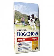 Purina Dog Chow Active Сухой корм для активных собак с курицей