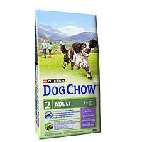 Purina Dog Chow Adult Lamb Сухой корм для взрослых собак с ягненком