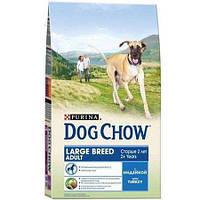 Purina Dog Chow Adult Large Breed Turkey Сухой корм для взрослых собак крупных пород с индейкой