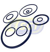 Ремкомплект для фильтра опрыскивателя (Tolveri)