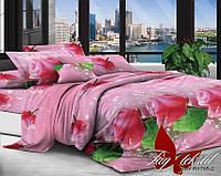 Постель недорогая, размер евро, недорогое постельное,  XHY1795-2