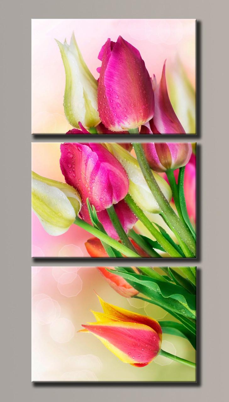 Картина модульная HolstArt Тюльпаны 117*54см 3 модуля арт.HAT-001