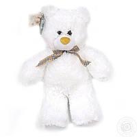 Ведмідь Тедді