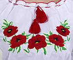 Женская батистовая вышиванка с полевыми  маками , фото 2