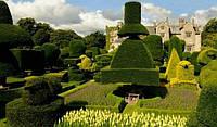 Левенс Холл – самый красивый топиарный сад Англии