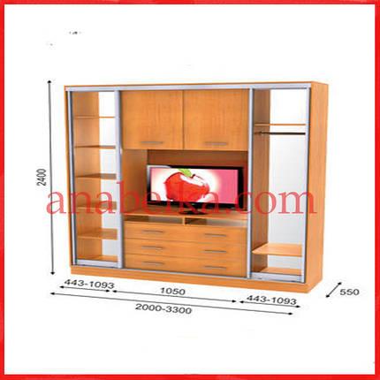 Шкаф купе ТВ-2  2400*550*2400  (Анабель), фото 2