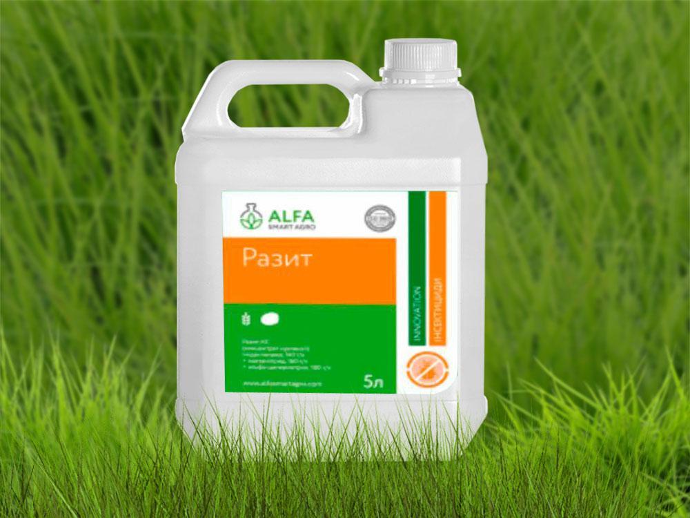 Инсектицид Разыт / Разит; имидаклоприд 140 г/л + ацетамиприд 160 г/л + альфа-циперметрин 100 г/л