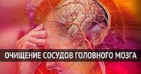 Нарушения работы головного мозга, умственная деятельность, повышение памяти, внимания, питание клеток мозга