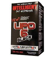 Nutrex Lipo-6 Black Ultra Concentrate (Для снижения веса)