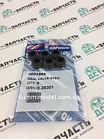 4003966/3606766 Маслосьемный колпачок Cummins M11/QSM11
