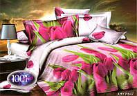 Комплект постельного белья №пл219 Полуторный, фото 1
