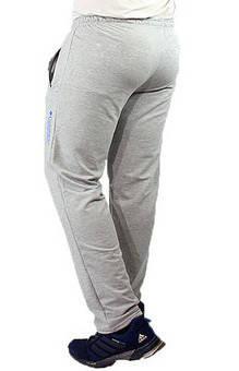 Спортивные штаны с логотипом Колорадо мужские трикотажные светло серые прямые Украина