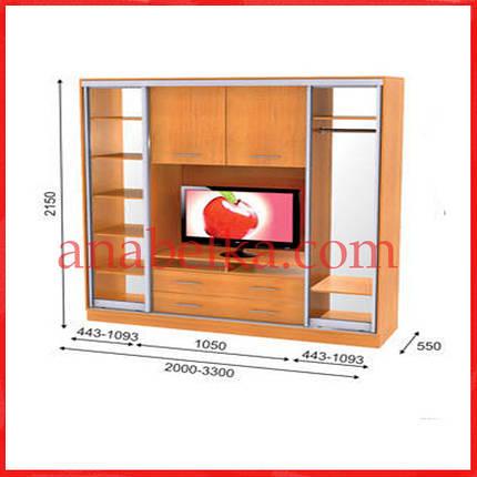 Шкаф купе ТВ-2  3000*550*2150  (Анабель), фото 2