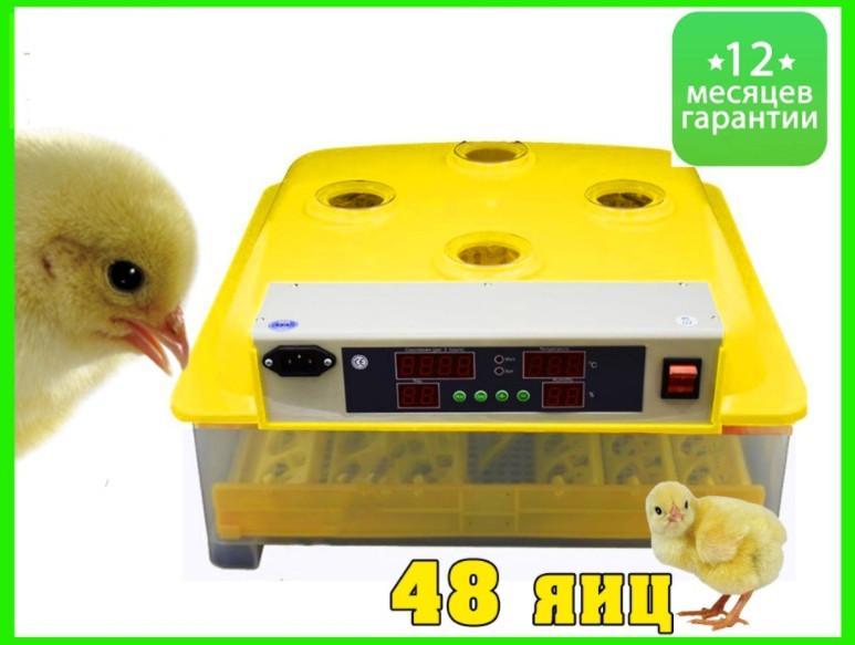 Инвекторный бытовой Инкубатор с автопереворотом MS-48 (48 куриных яиц)