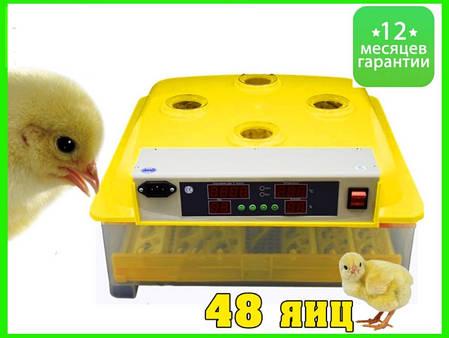 Инвекторный бытовой Инкубатор с автопереворотом MS-48 (48 куриных яиц), фото 2