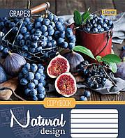А5/48 лин. 1В Natural Fruits -17 тетрадь ученич.