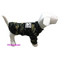 Свитер Y-79 для собак DogsBomba