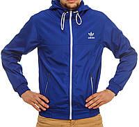 Мужская мастерка Adidas синяя
