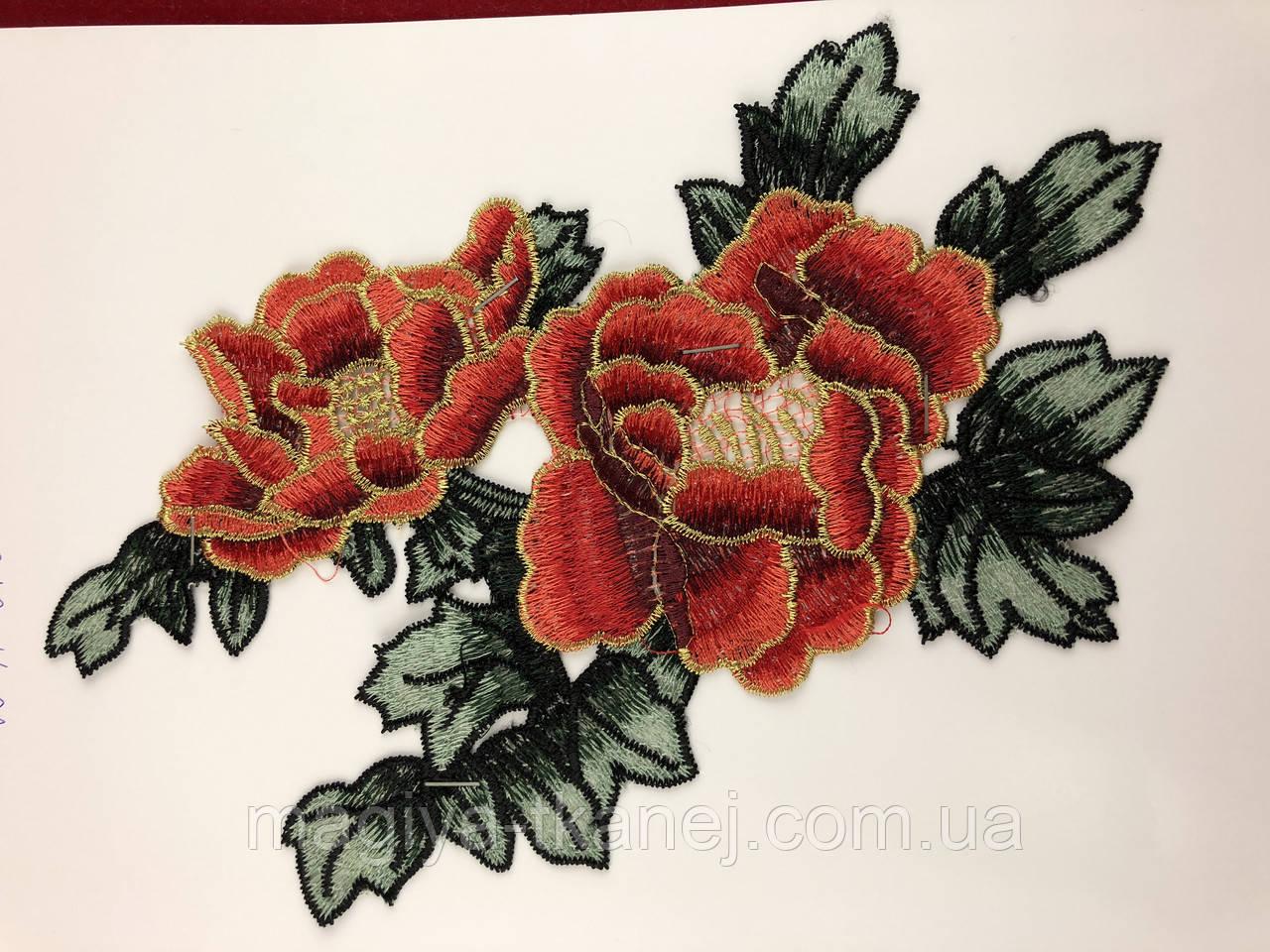 Роза 6104