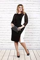 Черно-белое платье с рукавами из сетки | 0727-1