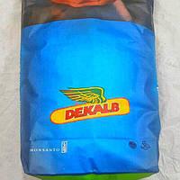Семена кукурузы, Monsanto, DKС 4717, ФАО 400