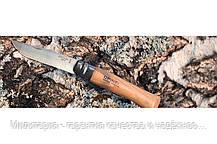 Нож Opinel (опинель) Inox Natural №10 VRI бук блистер (001255), фото 3