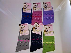 Носки Высокого Качества Цветные