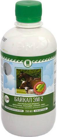 Байкал ЭМ-2 для коров, лошадей, свиней, овец, фото 2