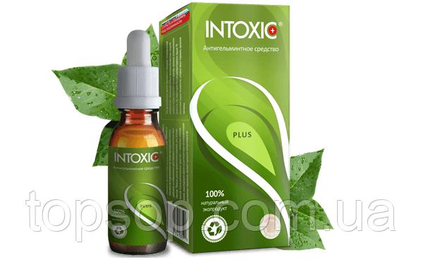 Intoxic Plus