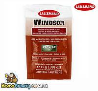 Дрожжи пивные элевые Danstar Windsor Ale Yeast