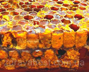 Перга пчелиная в сотах с медом (0.5 л)