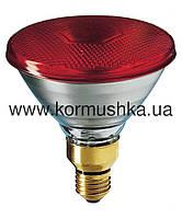 Лампа инфракрасная IR PAR 38 красная (175 W)