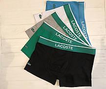 af7d86770a48a84 Мужские трусы Lacoste Лакост трусы мужские боксеры шорты хлопок 5 цветов  реплика, фото 2