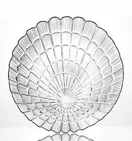 Набор тарелок десертных стеклянных Pasabahce Атлантис 190 мм 6 шт (10234)