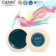 Гель краска CANNI цвет 641