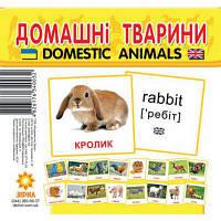 Картки міні Домашні тварини (110х110 мм) (укр-англ)