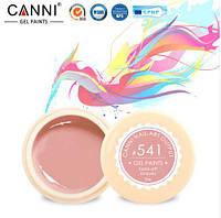 Гель краска CANNI цвет 541