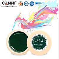 Гель краска CANNI цвет 614