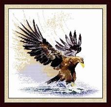 Величественный  орел D057 Набор для вышивки крестом с печатью на ткани 14ст