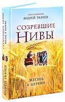 Созревшие нивы. Жизнь в Церкви. Протоиерей Ткачев Андрей