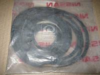 Уплотнитель стекла (пр-во Nissan) 72716EL000