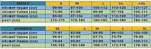 Термобелье MIZUNO MID WEIGHT SOLID CREW 73CF091-01, фото 3