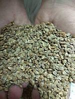 Семена Эспарцета песчаного