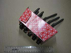 Комплект болтов VAG 1.8TSI/2.0 FSI/TFSI AXX/BGB/BPJ/BUL/BWA/BWE/BWT/BZB (пр-во Elring) 325.930