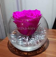 Стабилизированная роза в вазе (розовая)