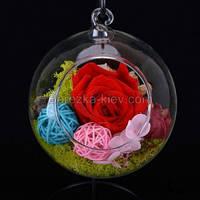 Стабилизированная роза в вазе шар (красная)