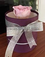 Стабилизированная роза в коробке