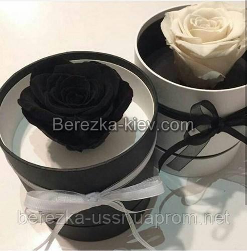 Стабилизированная роза в коробке (черная)