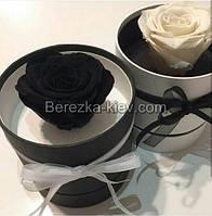 Стабилизированная роза в коробке (черная), фото 1
